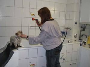 Die selbst konstruierte Badewanne erlaubt rückenschonendes Arbeiten