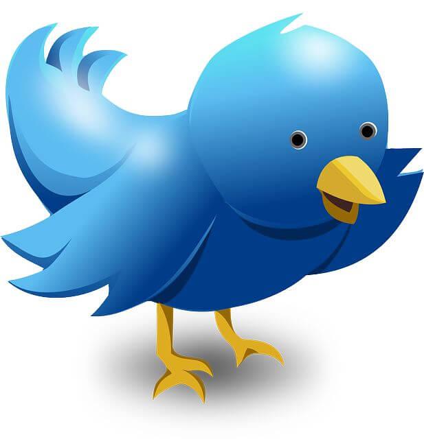 Buy Button: Was kann man wohl mit einem Tweet bei Twitter verkaufen?