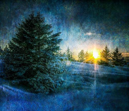 5 Tipps für Weihnachtsgrüße: Wie man sich noch auf den letzten Drücker bei Geschäftsfreunden bedankt