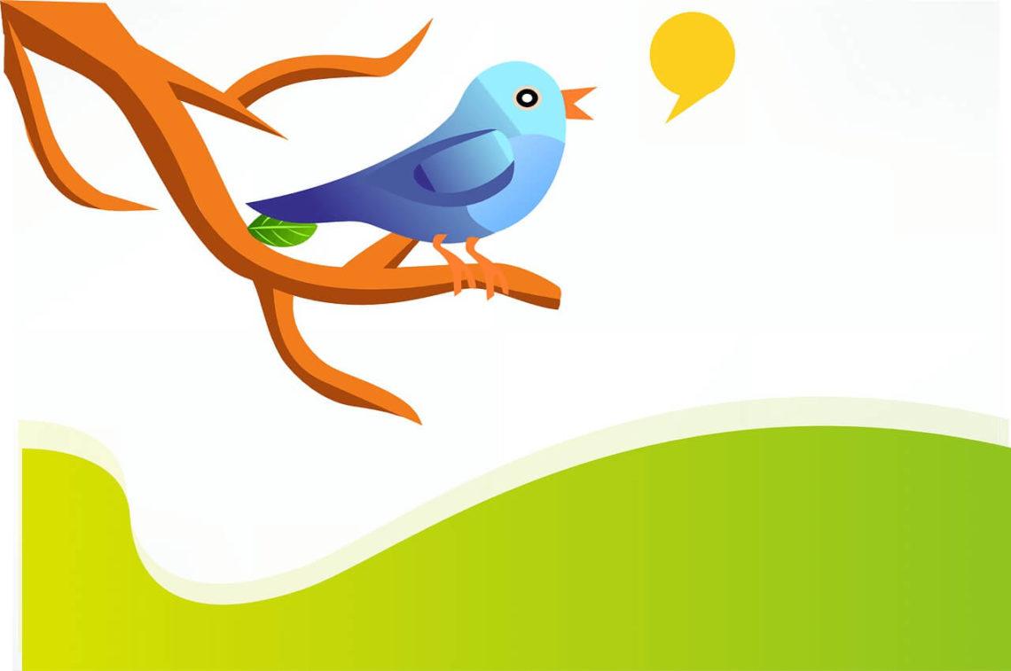 Checkliste zum erfolgreichen Twitter Marketing