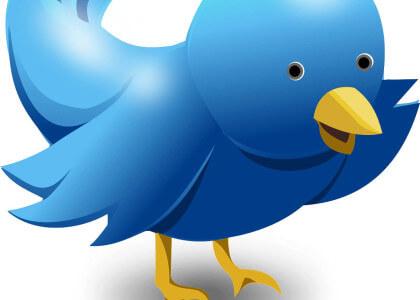 Twitter Ergebnisse in der Google Suche: Mit Hashtag bald auch in Deutschland