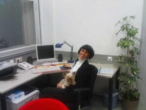 mein Buero mit Hund