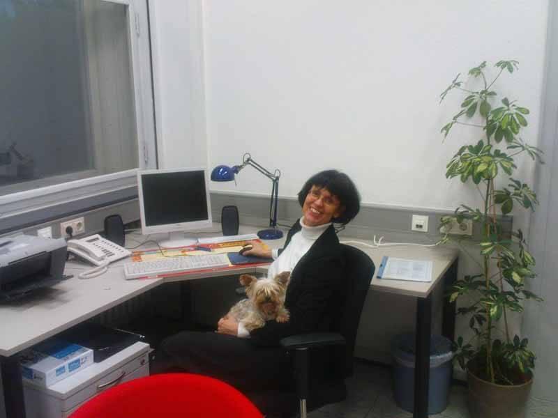 mein-Buero-mit-Hund
