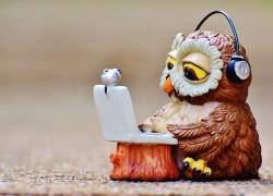 Podcast-Empfehlung von Eva Ihnenfeldt: Gründer und StartUps