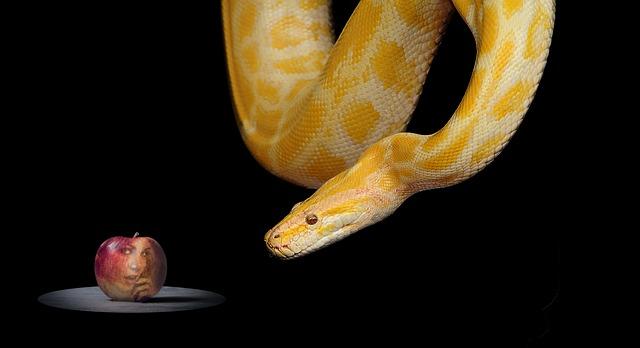 """""""Vertrau mir!"""" zischt die Schlange"""