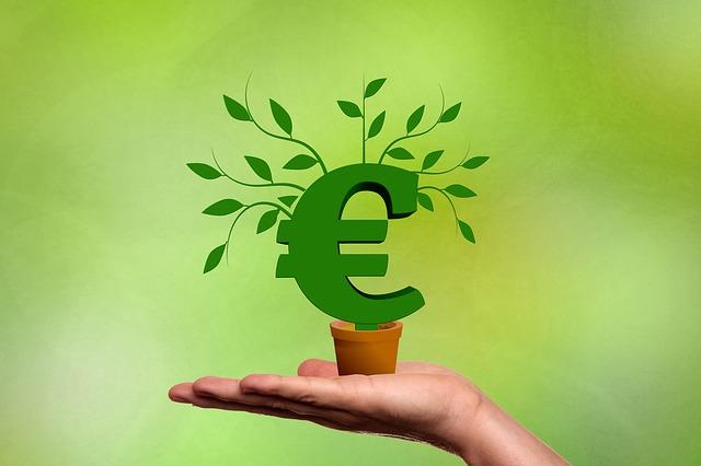 Unverzichtbar für die Unternehmensgründung – der Finanzcheck