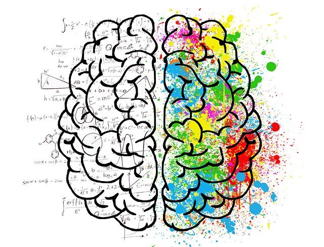 """Neuromarketing: Wo sitzt der """"Kaufknopf"""" im Gehirn?"""