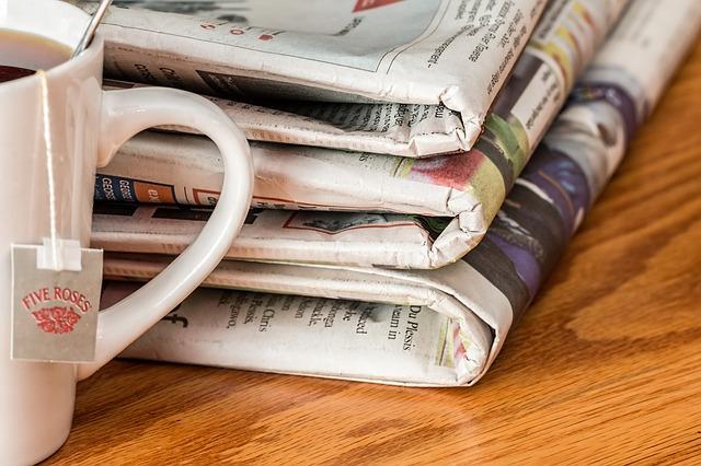 Einzelne Artikel aus der Presse lesen mit Blendle