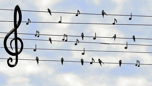 Facebook Sound Collection: Musik suchen, finden und einbinden in unsere Facebook-Videos
