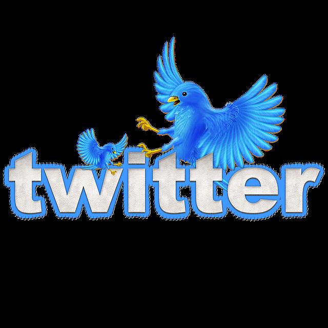 """Social Media """"Einfach tun"""": 11. Twitter für sich erobern"""