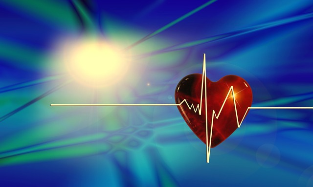 https://pixabay.com/de/herz-kurve-gesundheit-puls-66888/