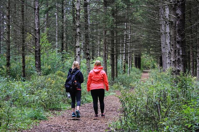 Tipps für den gemeinsamen Spaziergang: Das 36 Fragen-Spiel