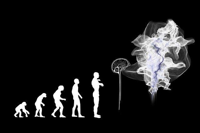 Korrelation versus Kausalität: Das Problem mit Künstlicher Intelligenz