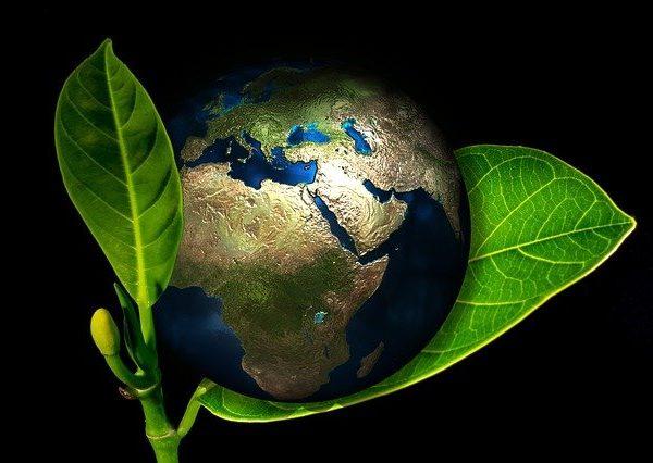 Zero Waste: Umweltschutz kann jeder